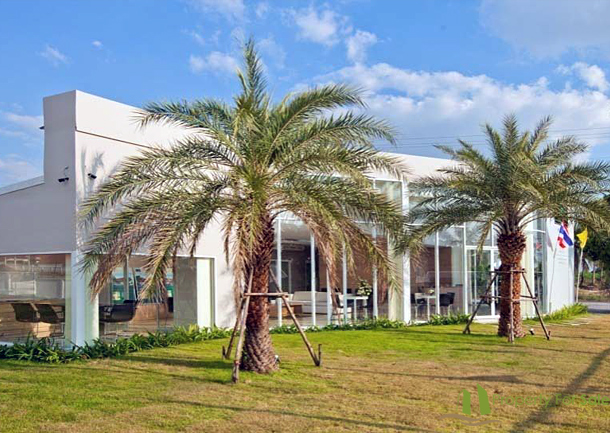 Villa In The Ville Jomtien Pattaya 5 Zimmer Haus Kaufen